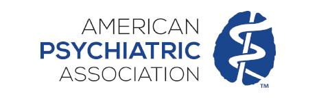 American Psychology Association